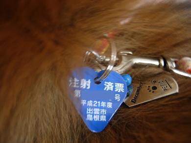 狂犬病予防注射済み票