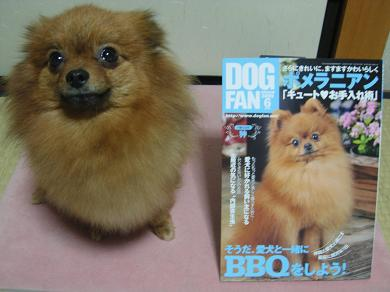 DOG FAN と りおん