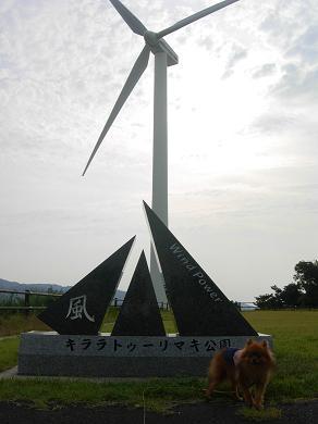キララ トゥーリマキ公園