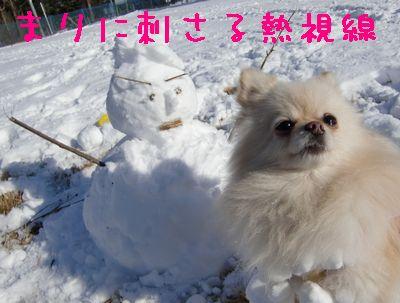 CIMG4619.jpg