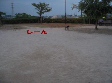001_20090614133704.jpg