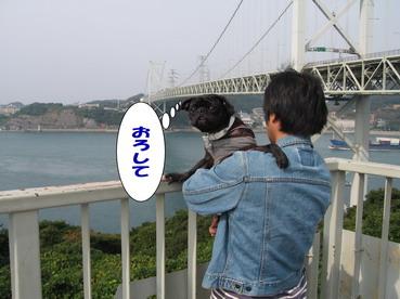 015_20081107234941.jpg