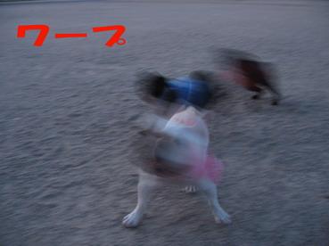 015_20090621131512.jpg