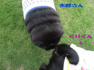 024_20081107235112.jpg