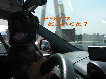 1.ドライブどこいくと?