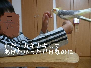 いじられポン4