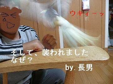 いじられポン6