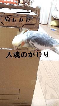 大物ア-ト3