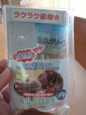 p20090929hamigaki.jpg