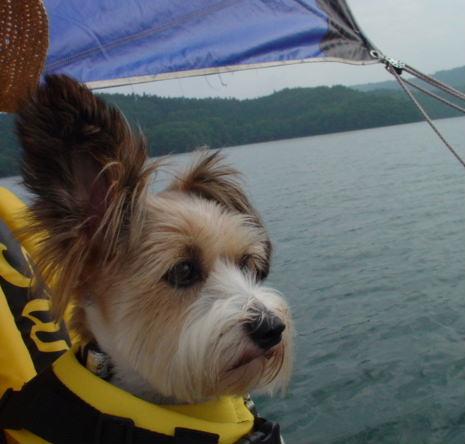 ヨットに乗るリプリー