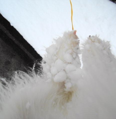 足についた雪玉