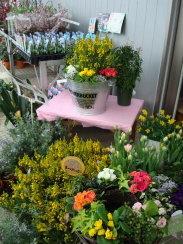 花屋さんの花
