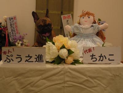 2011_10_04_25.jpg