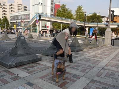 2011_10_08_10.jpg
