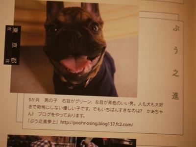 2011_10_11_15.jpg
