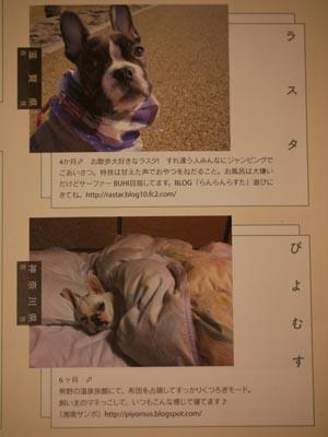 2011_10_11_16.jpg
