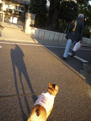 2011_10_26_04.jpg