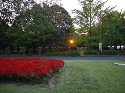 2011_10_27_20.jpg