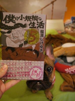 2011_12_05_27.jpg
