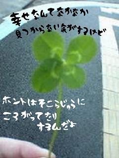 image5284203.jpg
