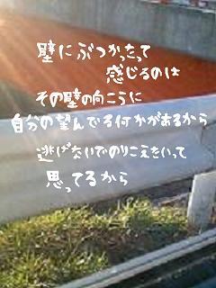 image6292709.jpg