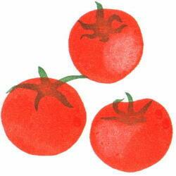 大トマト色見本