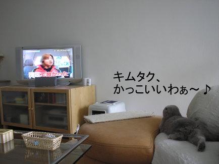 097122.jpg