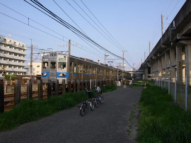 P080519.jpg