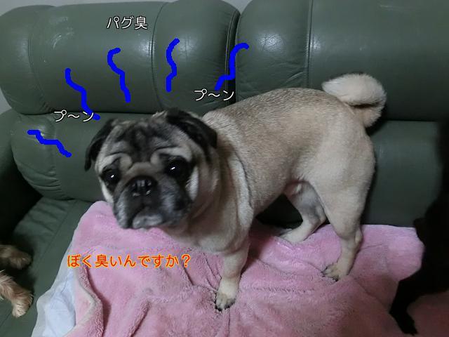 NRvL_r2RThyOM_J.jpg
