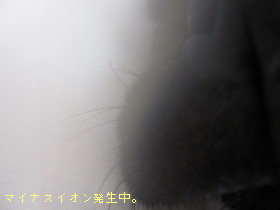 IMG_091021__3.jpg