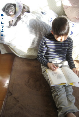 IMG_20090111__8.jpg