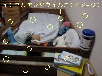 IMG_20091107__1.jpg