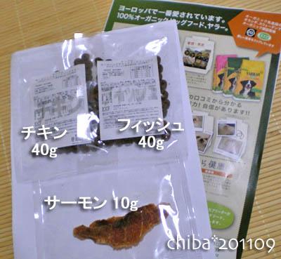 chiba11-9-05.jpg