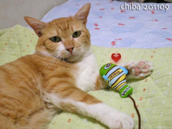 chiba11-9-55.jpg