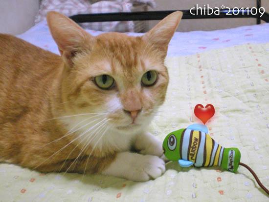 chiba11-9-58.jpg