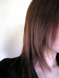 2009/4/9