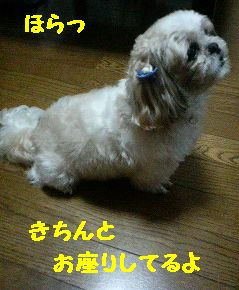 200711011937000.jpg