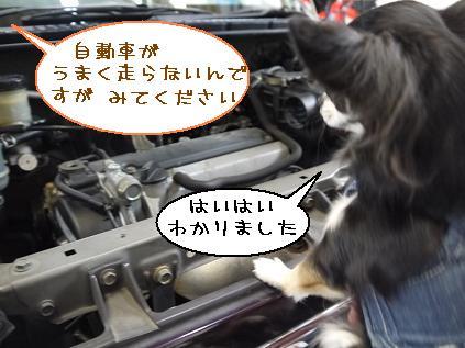 1_20120314184657.jpg