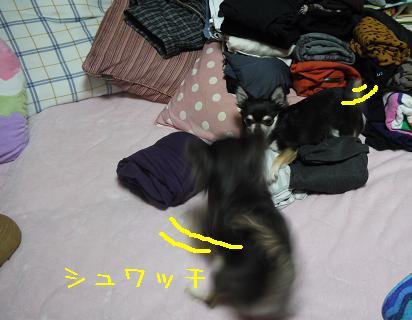 4_20120124141037.jpg