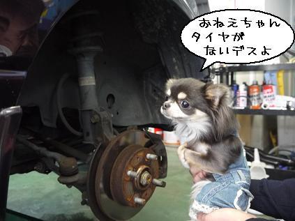4_20120314184656.jpg
