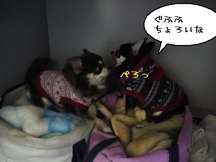 5_20120126101825.jpg