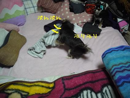 8_20120124141106.jpg