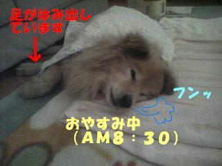 080328_083815.jpg