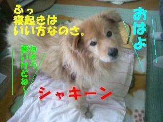 080328_091001.jpg