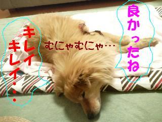 DCF_0056.jpg