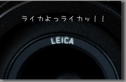 017_2.jpg