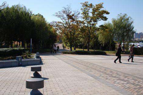 035_20081102192917.jpg