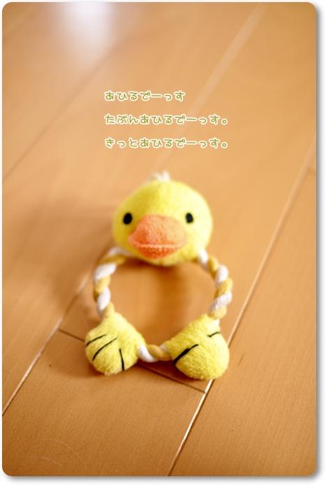 053_20090805201245.jpg