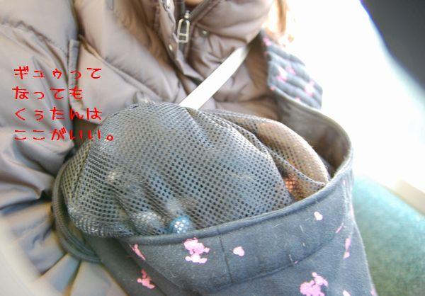 279_20090121190504.jpg