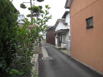 kojimakamaboko0810-1.jpg